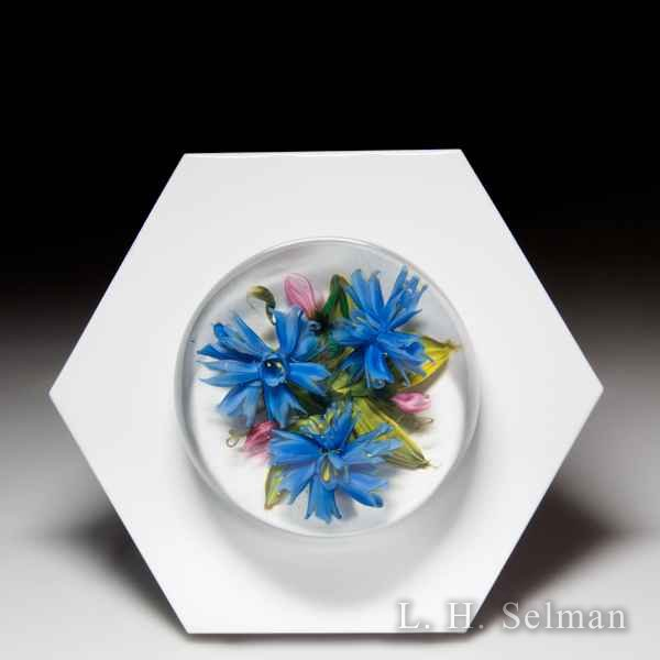 Melissa Ayotte 2019 blue cornflowers glass paperweight wall mount, from the Hive series. by Melissa Ayotte