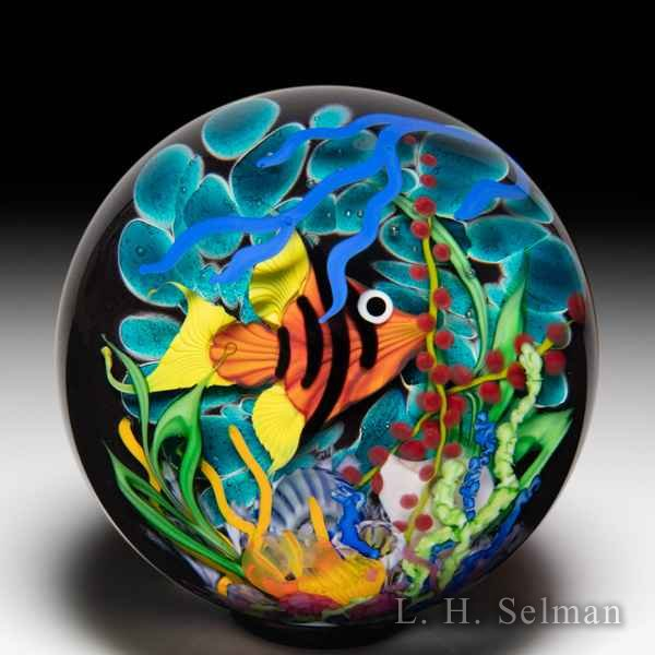 Mayauel Ward 2020 'Coral Reef' red angelfish compound glass paperweight. by Mayauel Ward