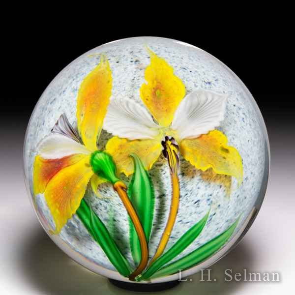 Mayauel Ward 2020 dual yellow orchids compound paperweight. by Mayauel Ward