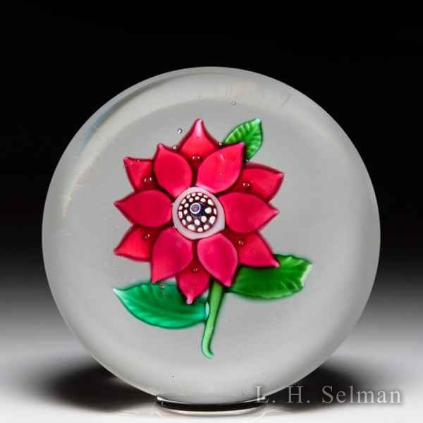 Antique Boston & Sandwich Glass Company red poinsettia glass paperweight. by  American